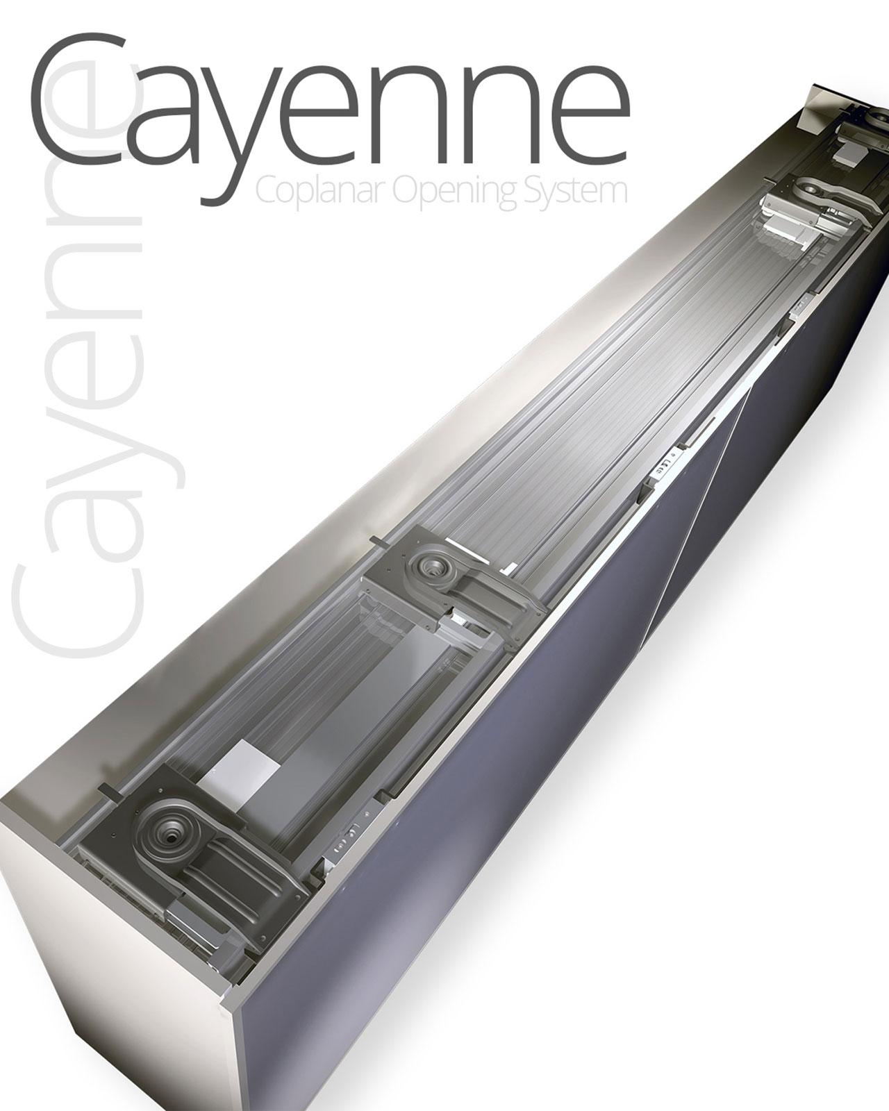 cayenne-20x25